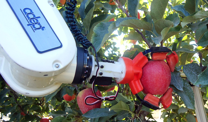 apple picker robot